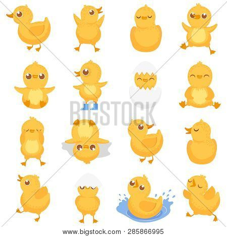 Yellow Duckling. Cute Duck Chick, Little Ducks And Ducky Baby Isolated Cartoon Vector Illustration