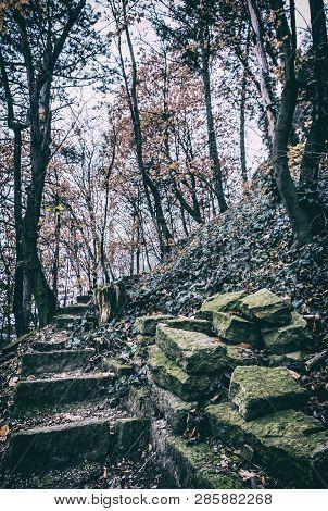 Broken Stoned Footpath In The Autumn Forest, Nitra, Slovak Republic. Seasonal Natural Scene. Analog
