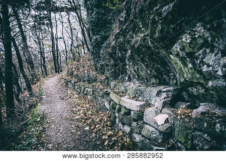 Footpath In The Autumn Forest, Nitra, Slovak Republic. Seasonal Natural Scene. Analog Photo Filter W