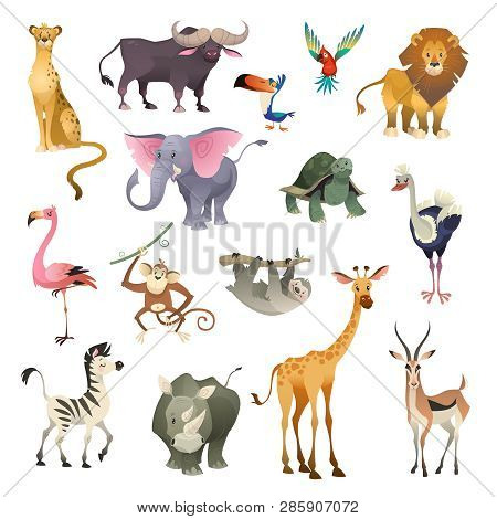 Jungle Wild Animals. Savannah Forest Animal Bird Safari Nature Africa Tropical Exotic Forest Marine