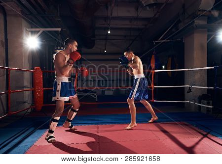 Muscular Boxers Practicing Kick Boxing With Sparring Partner In The Ring At The Sport Club
