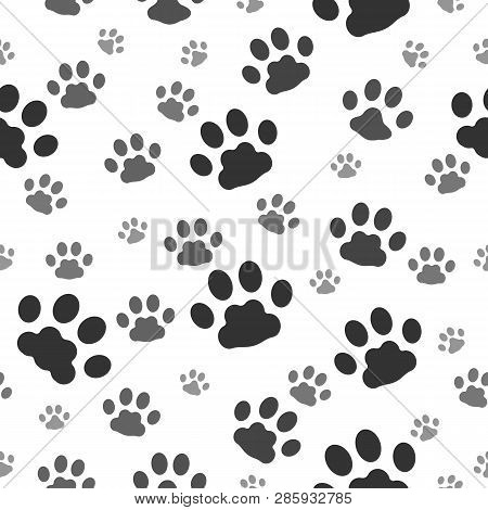 Paw Prints Pattern. Paws Print Of Dog Seamless Background, Cat Animal Printting Signs Dirty On White