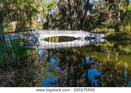 Bridge Over Cypress Gardens In Charleston, South Carolina