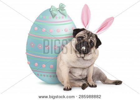 Adorable Cute Pug Puppy Dog Sitting Down Next To Pastel Colored Easter Egg, Wearing Bunny Ears And T