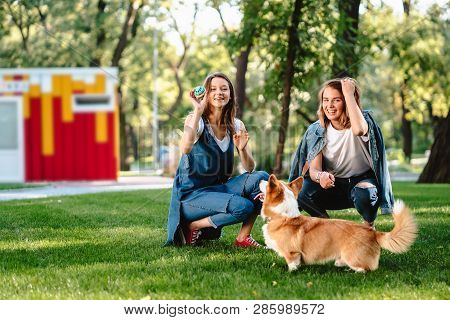 Two Female Friend In The Park Play With Little Dog