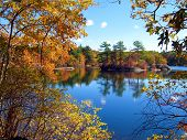 Forest lake in autumn gorgeous autumn colors blue sky mirrored in tranquil waters poster