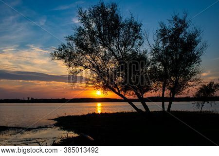 Sun setting behind pinaster trees silhouette at deserted lagoon with blue sky. Nature landscape at golden hour. Taken at \