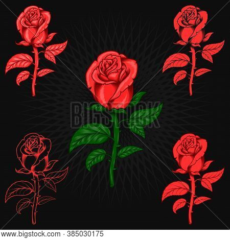 Vector Art Of Rose With Thorn With Five Color Styles And Lines