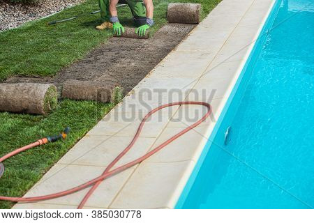 Landscaping Worker Installing Nature Grass Turfs From Roll Next To Residential Outdoor Swimming Pool