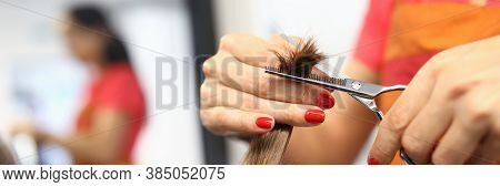 Female Hairdresser Hand Hold Strand Of Hair Closeup. Deauty Healthy Hair Care Concept