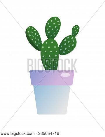 Prickly Pear Cactus Houseplant In Flowerpot. Indoor Potted Opuntia Plant For Home Or Office Interior