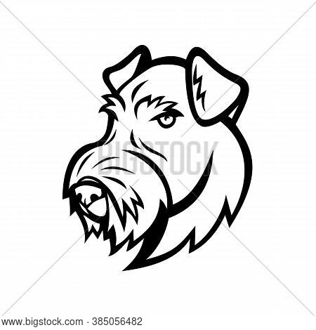 Mascot Illustration Of Head Of An Airedale Terrier, Bingley Terrier Or Waterside Terrier, A Dog Bree