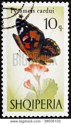 Postage stamp Albania 1966 Painted Lady, Butterfly, Pyrameis Ca