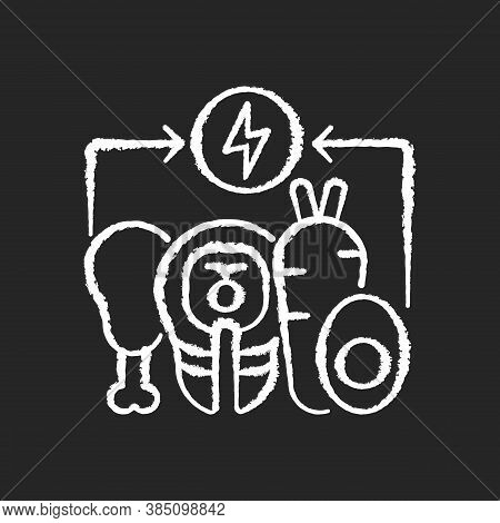 Energy Value Chalk White Icon On Black Background. Nutrient Food. Nourishment From Foodstuff. Salmon