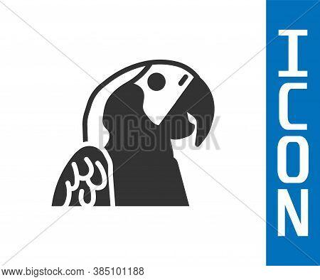 Grey Macaw Parrot Bird Animal Icon Isolated On White Background. Animal Symbol. Vector