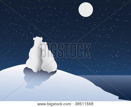 Polar Bear Romance