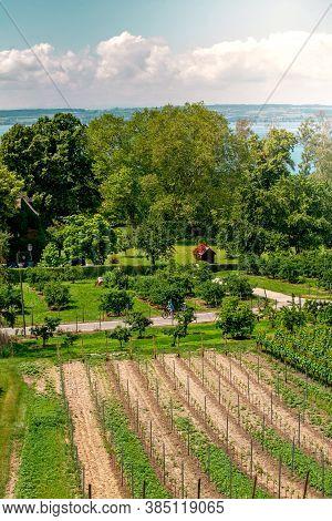 Curtural Landscape With Fruit Plantation Near Hagnau At Lake Constance (germany)