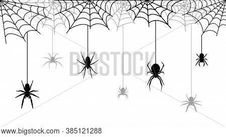 Spooky Halloween Background With Spider Web. Creepy Decorations On White Background. Vector Illustra