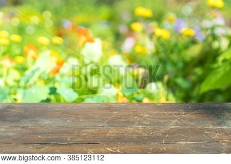 Background, Wood Table And Blur Green Tree Nature Backdrop, Empty Wooden Tabletop, Shelf, Counter Su