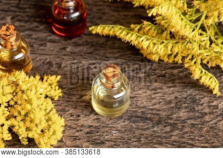 A Bottle Of Canadian Goldenrod Essential Oil With Blooming Solidago Canadensis Twigs