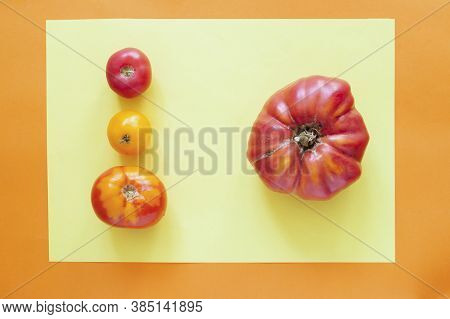 A Large Big Natural Tomato And 3 Small Ones On A Yellow Orange Background. One Is More Than Three. N
