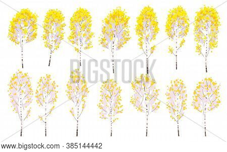 Set Of Simple Autumn Birches With Yellow Leaves Isolated On White. Colorful Forest Trees In Fall Sea