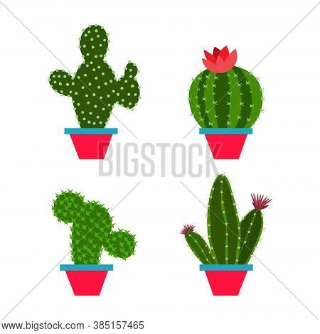 Set Cactus In A Flat Style On A White Background. Home Plants Cactus In Pots And With Flowers. A Var