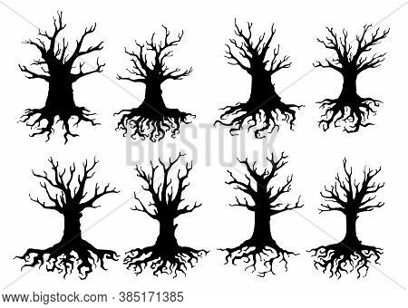 Dead Tree Isolated Silhouettes Of Vector Ecology And Halloween Design. Old Forest Trees With Black B