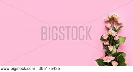 Light Pink Rose On The Light Pink Background. Flowers Composition. Floral Pink Background With Copy