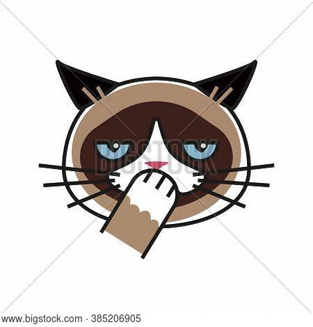 Shy Grumpy Cat. Meme Cat Isolated Whitebackground