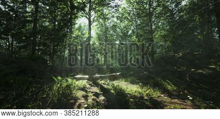 Beautiful Landscape View Of Magical Rainforest.colorful Landscape With Enchanted Trees With Green Le