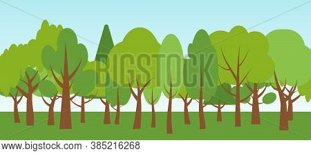 Flat Cartoon Ecology Nature Forest Landscapes And Blue Sky. Summer Season With Green Trees Oak, Birc