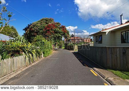 Road In Rotorua, New Zealand