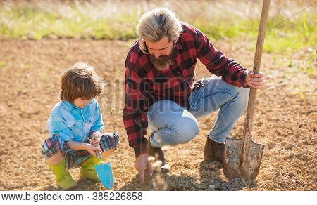 Growing Plant. Father Teach Son To Plant In Soil. Bearded Man And Child Set Plant In Spring. Open Gr
