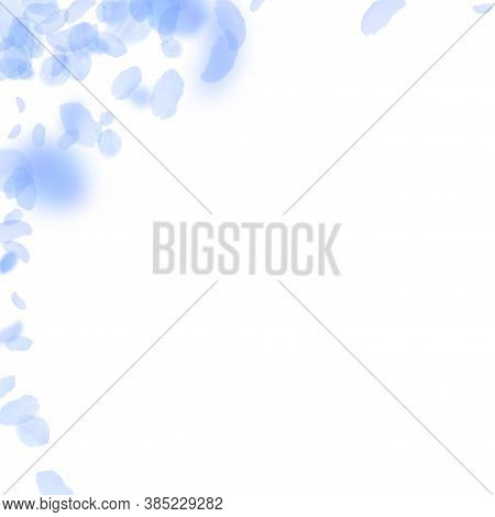Dark Blue Flower Petals Falling Down. Juicy Romantic Flowers Corner. Flying Petal On White Square Ba