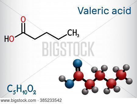 Valeric Acid, Pentanoic Acid Or Valerate Molecule. Structural Chemical Formula And Molecule Model. V