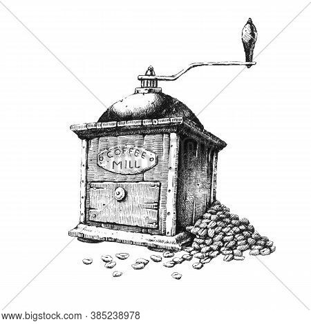 Old Coffee Grinder. Hand-drawn Black And White Illustration. Jpeg Only