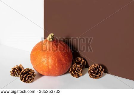 Orange Pumpkin And Fir Cones In Front Of Brown And White Background With Copy Space. Autumn Harvest.