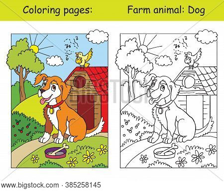 Coloring Pages With Cute Dog Listening A Song Of A Bird. Coloring And Colored Image Of Dog. Cartoon