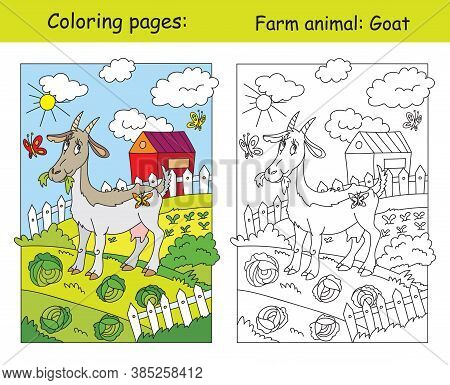 Coloring Pages Funny Vector Photo Free Trial Bigstock