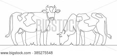 One Line Cows. Milk Cow Animal, Livestock And Beef Meat And Calf Farm Continuous Line Artwork Vector