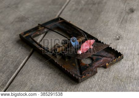 Mousetrap With A Piece Of Raw Meat On A Wooden Floor