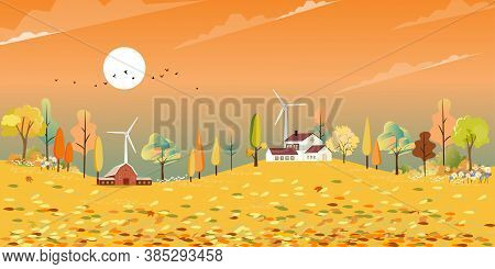 Autumn Landscape Wonderland In Village With Farm Fields, Mid Autumn Natural In Orange Foliage, Fall