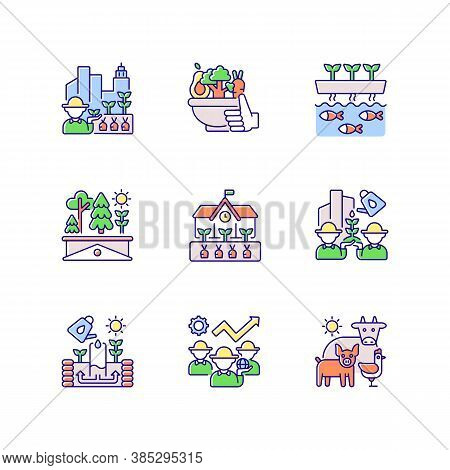 Agricultural Business Rgb Color Icons Set. Urban Farming. Healthy Food. Vegetables From Farmer. Aqua