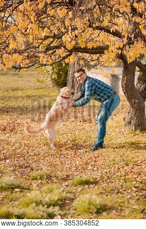 Man Playing With Big Golden Retriever Dog On Sunset. Dog Expresses Emotions To His Owner On Fresh Ai