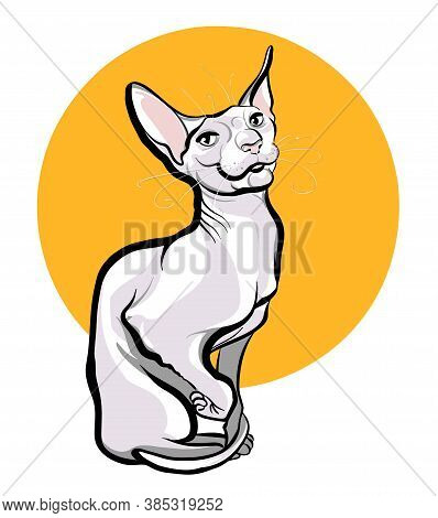 A Full-length Sphinx Cat Sits On A White Background With A Yellow Circle. Sketch Illustration Vector