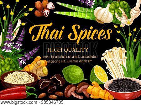 Thai Herbs, And Seasonings, Food Condiments And Herbal Cooking Ingredients, Vector Thai Cuisine Food