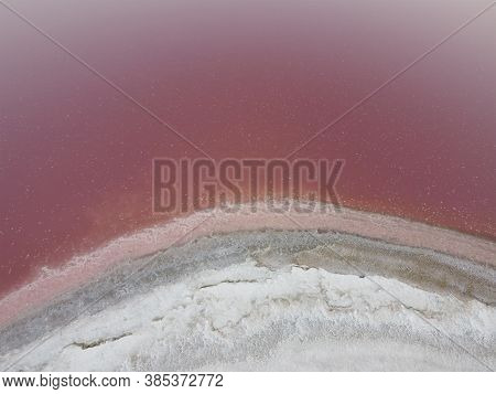 The White Shore Is Covered With Salt On A Pink Lake. Pink Lake Has A High Content Of Salt And Bacter