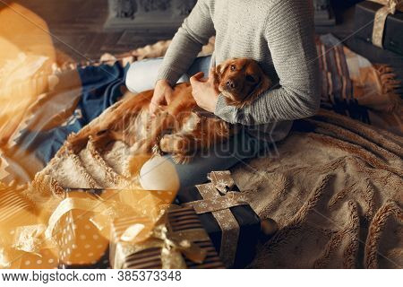 Handsome Man Sitting Hear Fireplace With A Dog