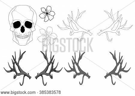 Set Of Elements. Realistic Black And White Human Skull, Large Sharp Deer Antlers, Flowers.
